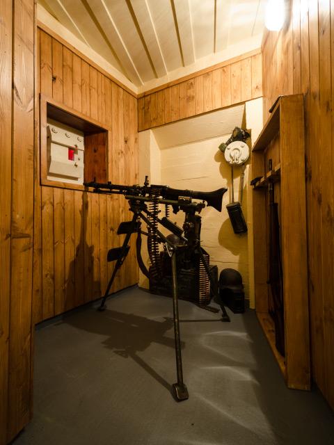 Entrance Defence